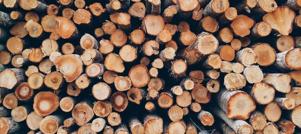 Выбираем антисептик для дерева